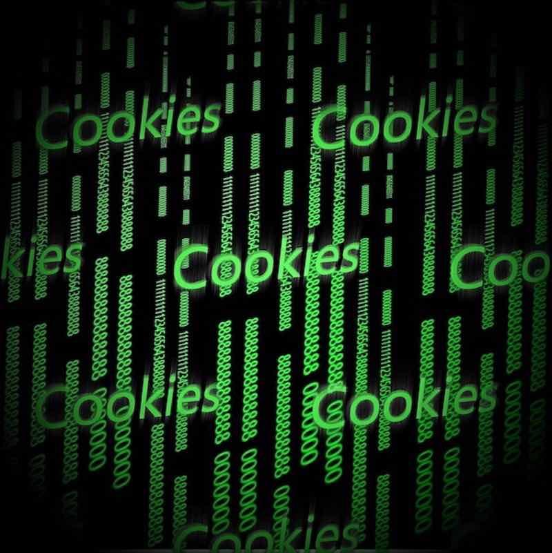 cookies og privatpolitik